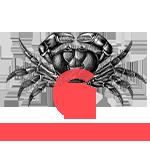 Il pauro del Conero logo