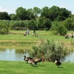 Conero Golf Club Sirolo Marche