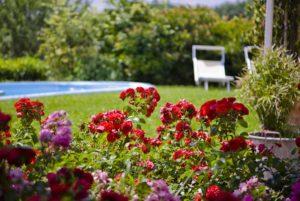 B&B Sirolo Borgo Rosso