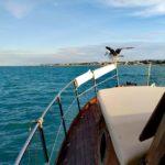 Gite in barca Riviera del Conero